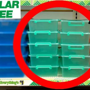 10 Things You SHOULD Be Buying at Dollar Tree in September 2021