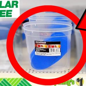 10 Things You SHOULD Be Buying at Dollar Tree in October 2021